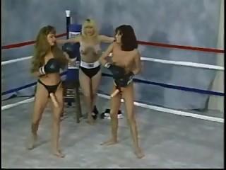 Lesbian Strapon Boxing